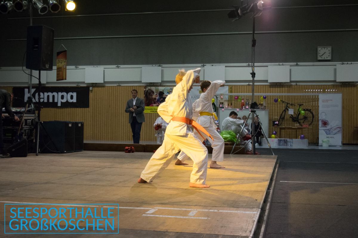 SMVK 20171118 DSC 3916