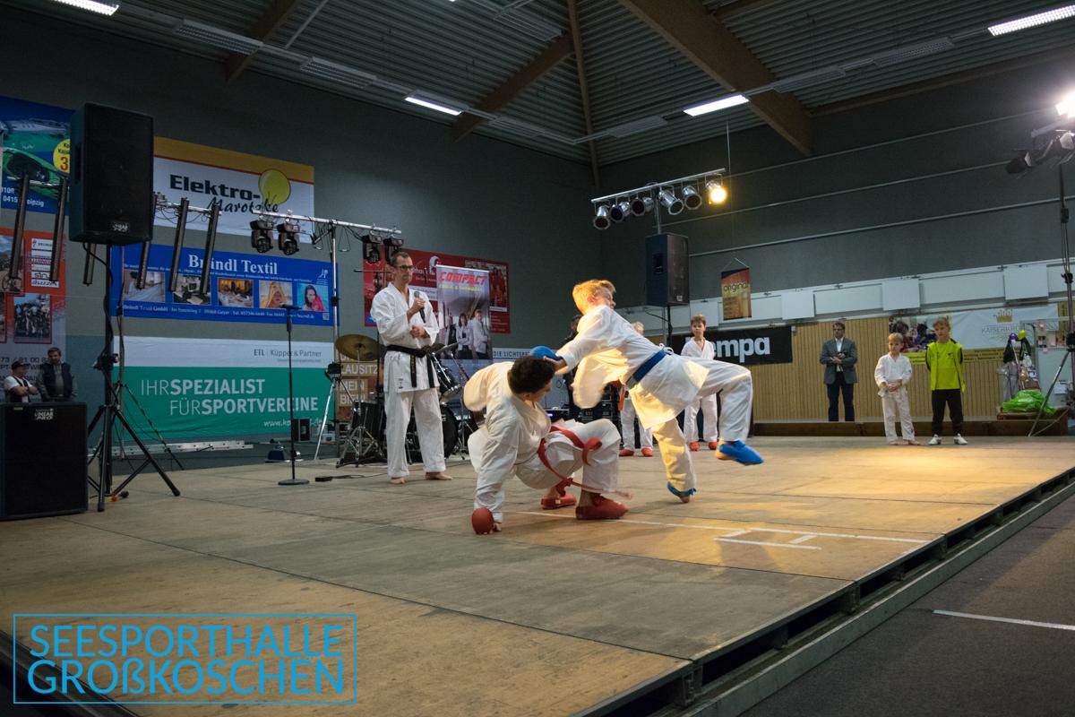 SMVK 20171118 DSC 3945